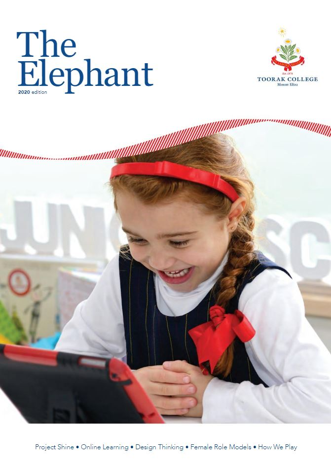The Elephant 2020